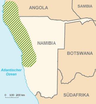 Namib Wüste Karte.Schattenblick Pflanzen 046 Entlegenes Grün Wüstenmethusalem