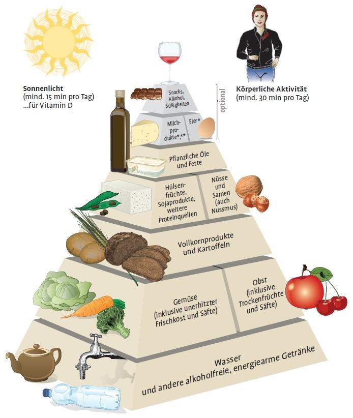 fettverbrennung abnehmen quick
